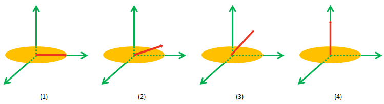 Net Magnetization Return to Equilibrium by Turning Off the B1, (The Arrow Represents Net Magnetization)