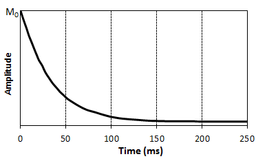 The Amplitude of the Decaying Spin Echoes Yield an Exponentially Decaying Curve with Time Constraint T2