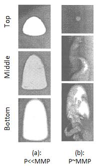 Bubble Behavior of Vaporizing Gas Process